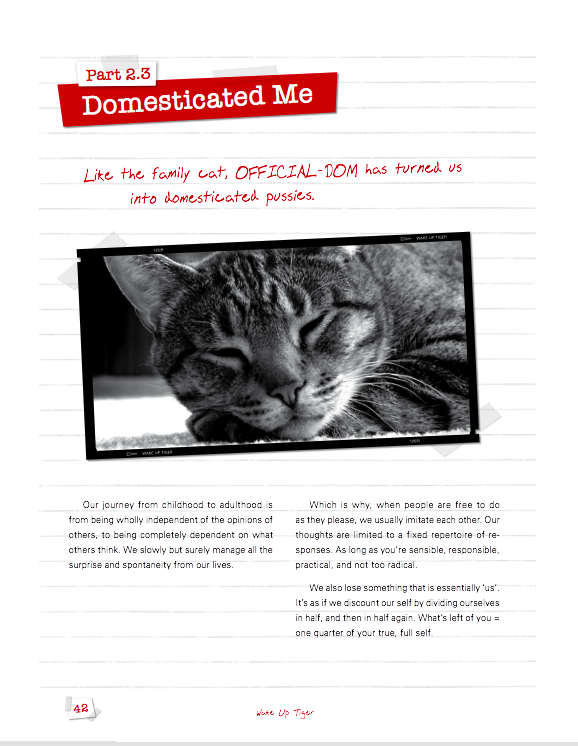 7-domesticated-me